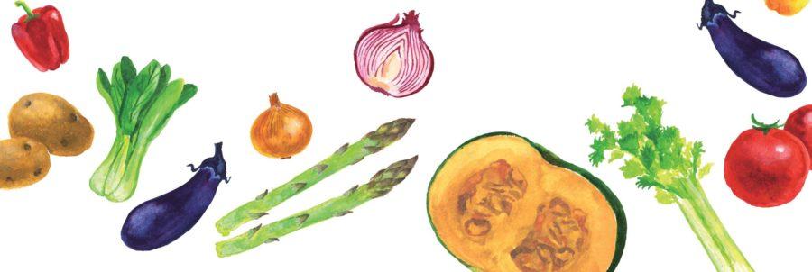 フードイラスト,フードイラストレーション,野菜,ベジタブル,vegetable,かぼちゃ,アスパラガス,玉ねぎ,じゃがいも,ズッキーニ,パプリカ,トマト,青梗菜,ブロッコリー,レタス,なす,オクラ,セロリ